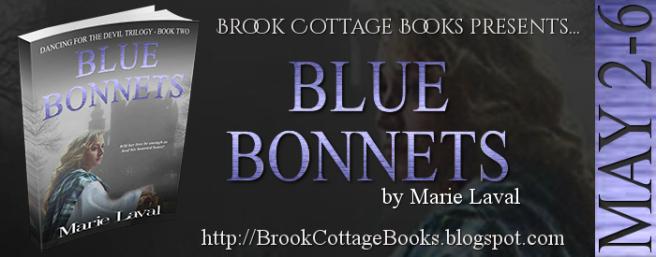 BlueBonnetsTourBanner 1